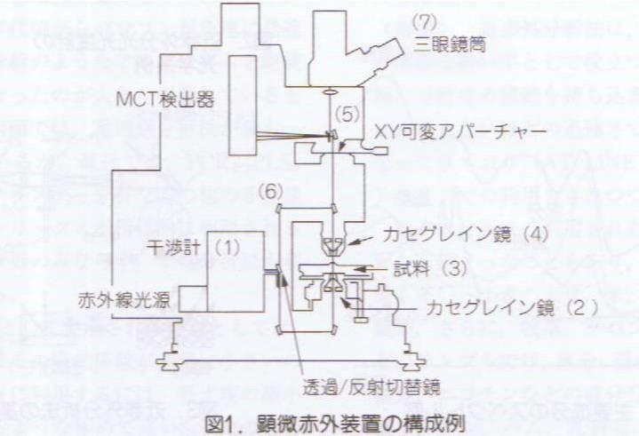 4.2.3h項顕微分析原稿110421_001