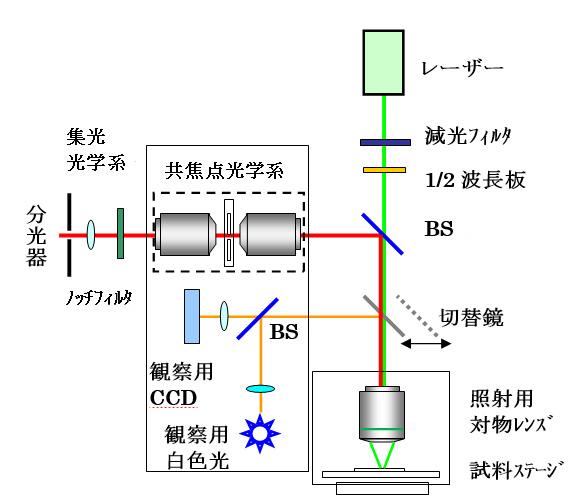 4.2.3h項顕微分析原稿110421_002